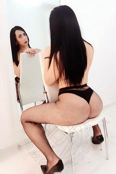 Iris Hot  SAN DONA DI PIAVE 3880553281